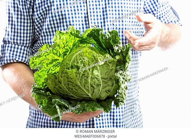 Mature man holding savoy cabbage against white background, close up
