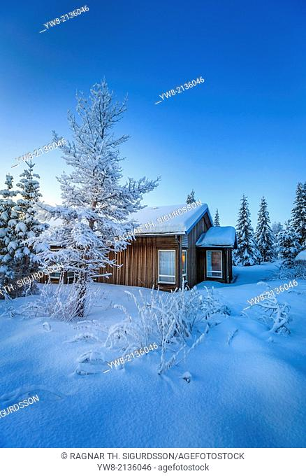 Log Cabin and snow covered trees in extreme cold temperatures, Lapland, Sweden