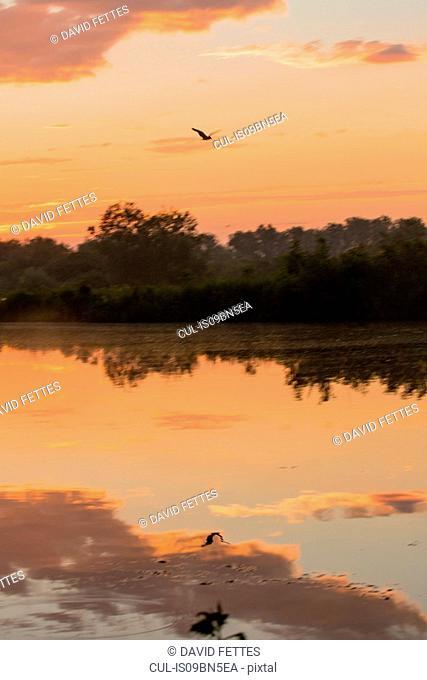 Sunrise over lake, Kiskunsagi National Park, Hungary