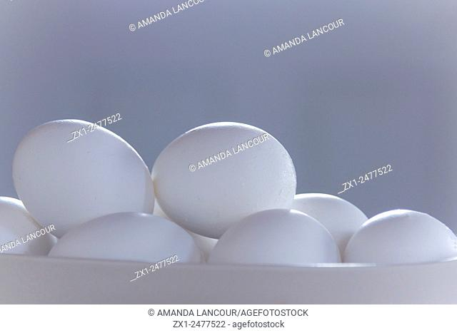 Siloutte of eggs in shell with a landscape view in monotones