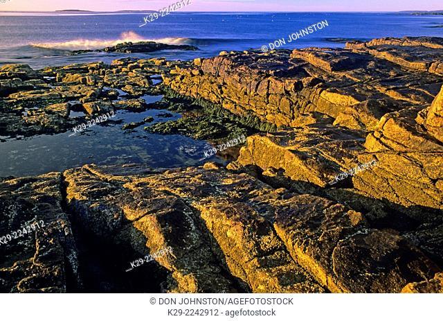 Rocky Atlantic coast at sunrise, Acadia National Park, Maine, USA