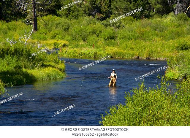 Flyfishing, Crescent Creek Wild and Scenic River, Deschutes National Forest, Oregon