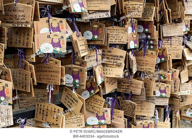 Wooden wish plaques, Ema, at Toshogu Shrine, Ueno Park, Tokyo, Japan