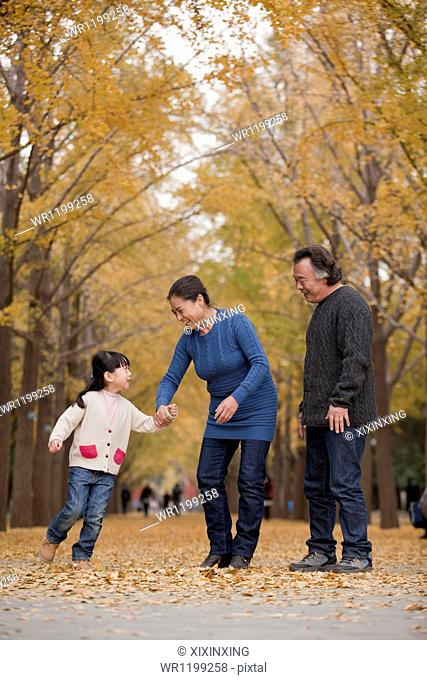 Grandparents and granddaughter playing in park