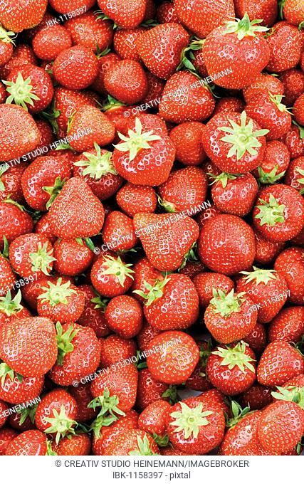 Strawberries, full-frame