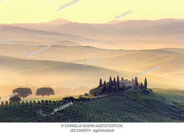 Typical Tuscan farmhouse with cypress trees, Val d'Orcia, Orcia Valley, Tuscany Landscape, UNESCO world heritage site, San Quirico d'Orcia, Siena Province