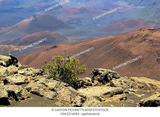 Crater of Volcano Haleakala, Haleakala National Park, Maui Island, Hawaii, USA
