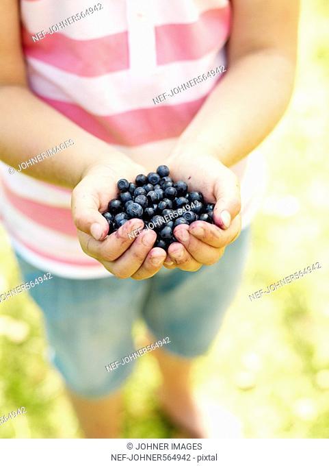 Blueberries in a girl‰Ûªs hand, Sweden