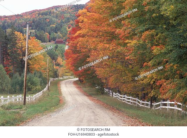 country road, fall, foliage, Sutton, VT, Vermont, Colorful maple trees along a white fence on a country road on King George Farm in the autumn
