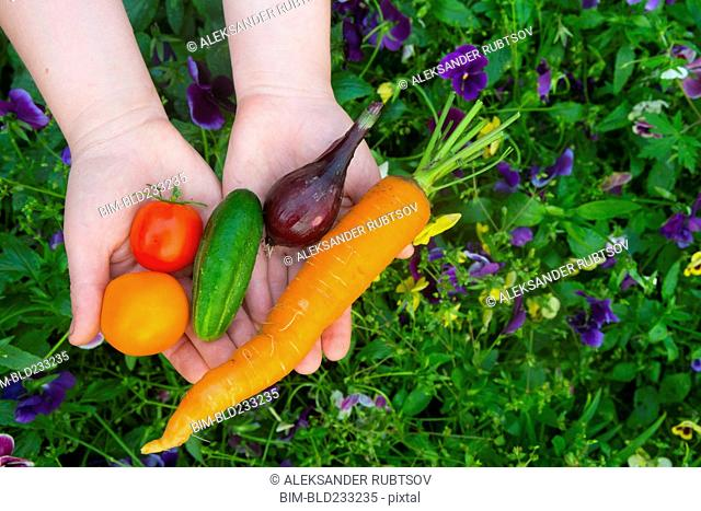 Close up of hands holding fresh vegetables over flowers