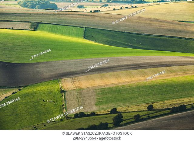 Late summer in South Downs National Park near Brighton, East Sussex, England