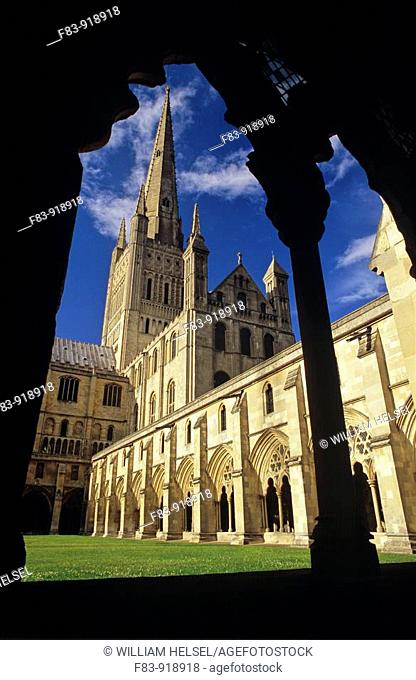 UK, England, Norfolk, Norwich Cathedral, primarily built 1096-1145: cloiser lawn or 'garth', cloister, south transept, crossing tower and spire