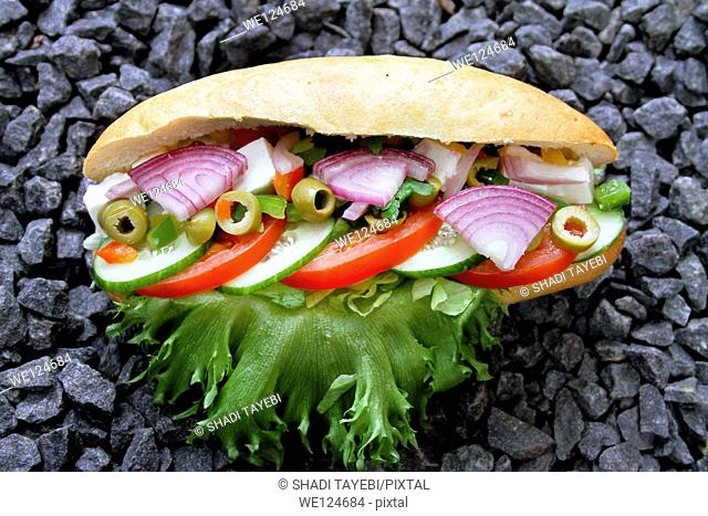 Fresh Sandwich with cucumber, onion,lettuce,tomato,olive and bread