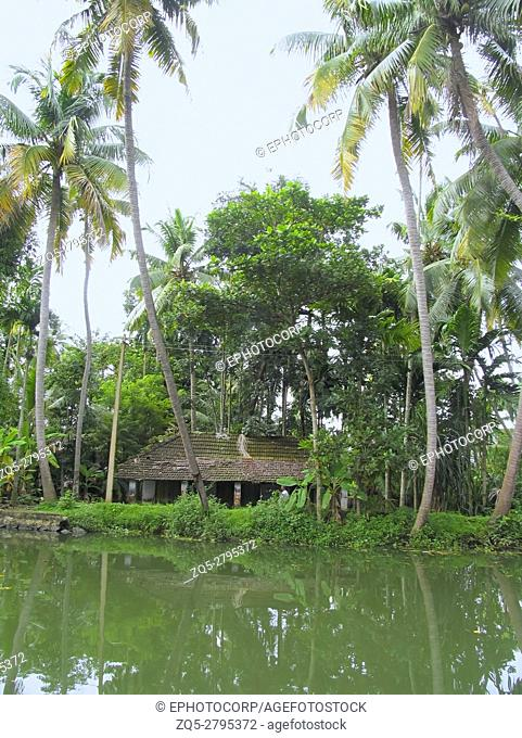 Landscape with coconut trees backdrop in the backwaters of Kerala, India