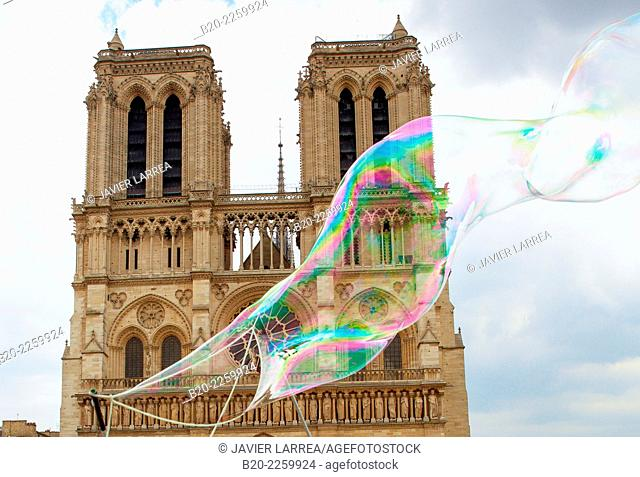 Soap bubbles. Notre Dame Cathedral. Paris. France