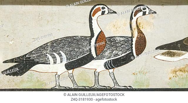 Egypt, Cairo, Egyptian Museum, from the tomb of Nefermaat, Maidum : Part of a wall painting, very famously called the Meidum geese