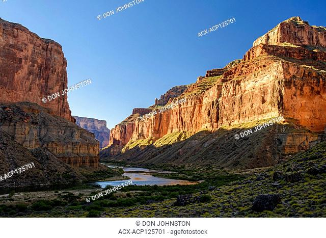 Plant community on the arid delta at Nankoweep, with the distant Colorado River, Grand Canyon National Park, Arizona, USA