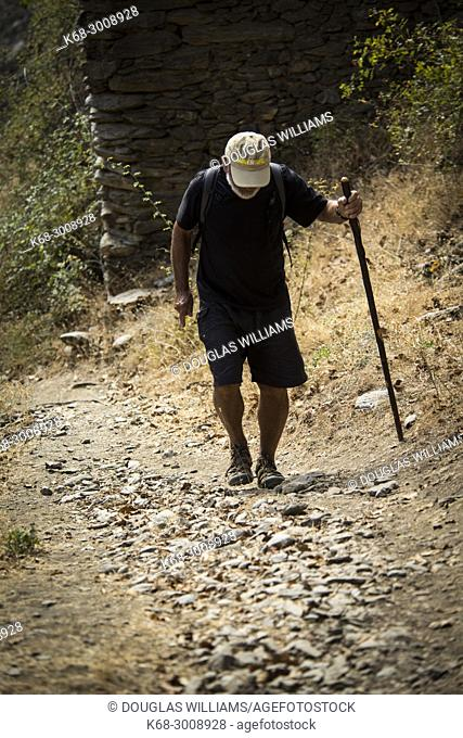 A man, 79, hiking in the Alpujarras, near Capileira, Andalucia, Spain