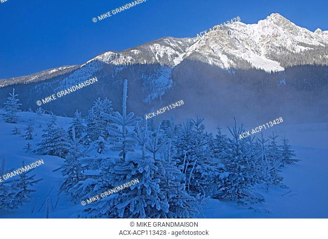 Fog along Kicking Horse River and The Canadian Rocky Mountains, Field, British Columbia, Canada