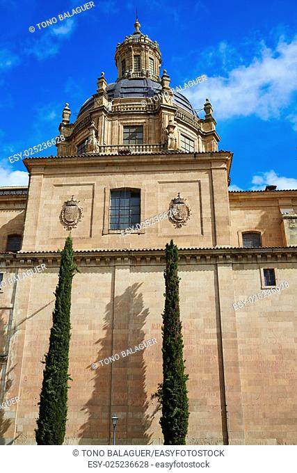 Salamanca Clerecia church in Spain