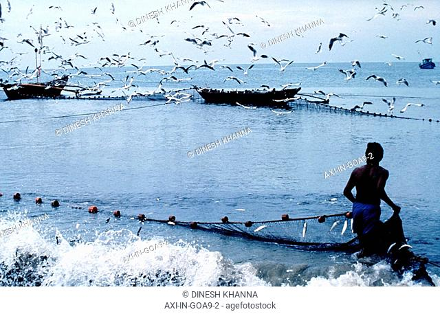 Fisherman collecting nets on beach