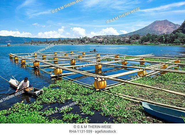 Lake Batur, Fishermen, Bali, Indonesia, Southeast Asia, Asia
