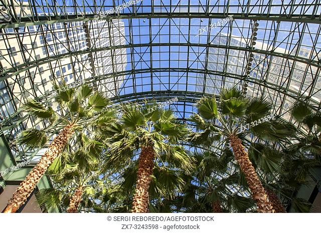 Inside World Financial Center office buildings in the financial district of Manhattan. World Financial Center. Winter Garden Atrium inside Brookfield Place on...