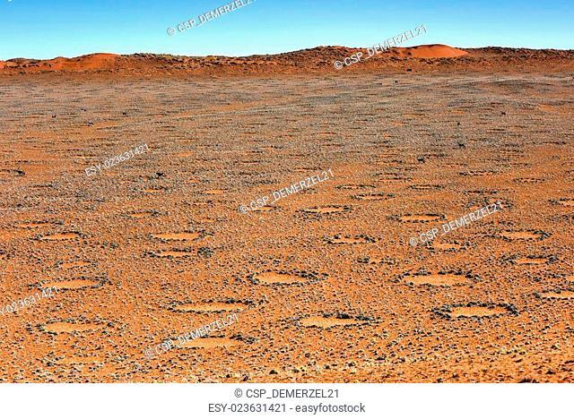 Fairy Circles - Namibia