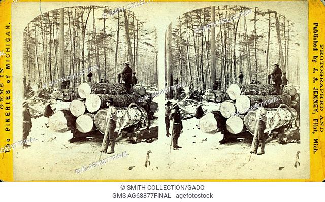 Stereographic card depicting a group of loggers hauling tree trunks on a large sled, titled 'Hauling at LB Curtis and Company'