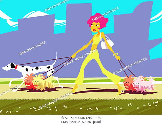 Athletic woman walking five dogs together