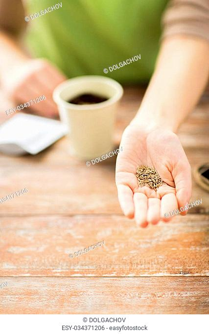 people, gardening, seeding and profession concept - close up of woman hand holding and showing seeds