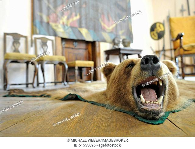 Living room with a bear rug as a trophy, Burg Clam Castle, Muehlviertel region, Upper Austria, Austria, Europe