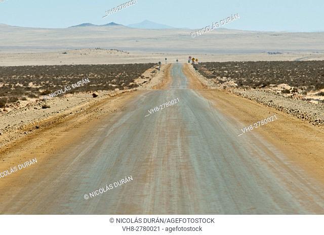 Dirt road. Pacific Coast. Región de la Serena. IV Región de Coquimbo. Chile. South America