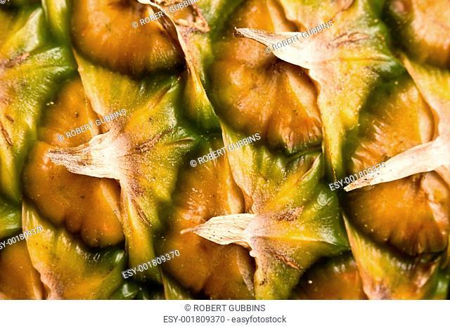 fruittime