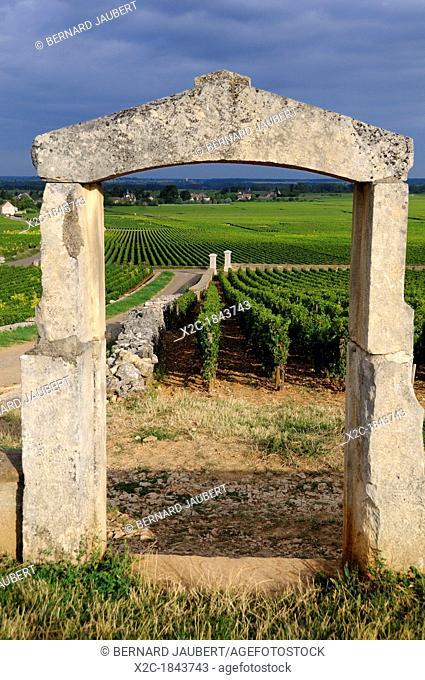 Portal of vineyard  Cote d'Or, Burgundy, France, Europe