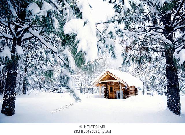 Cabin in snowy rural forest