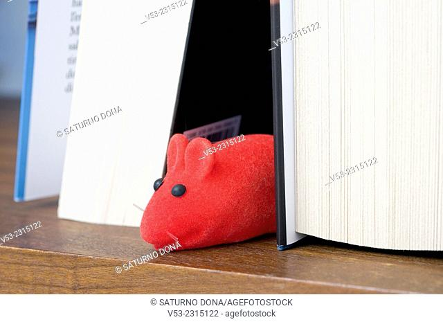 Red mice between books