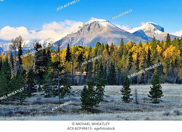 Syncline Mountain, West Castle River Valley, Castle-Crown Wilderness area, Rocky Mountains, Alberta, Canada
