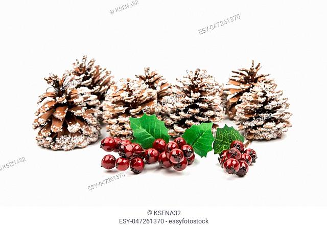 decoration of pine cones on a white background
