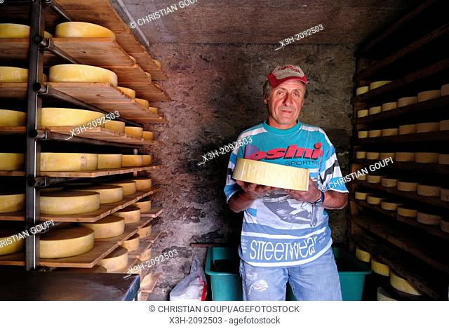 Louigi, cattle farmer, in his small cheese factory in montane grassland, Canton Ticino, Switzerland, Europe