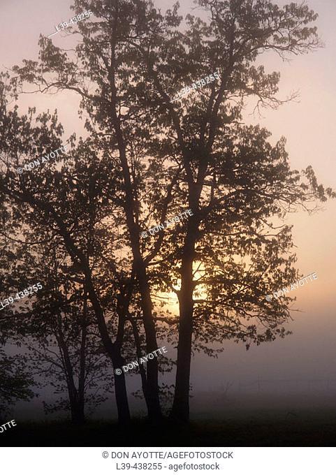 Turners Falls, Massachusetts at sunrise. USA