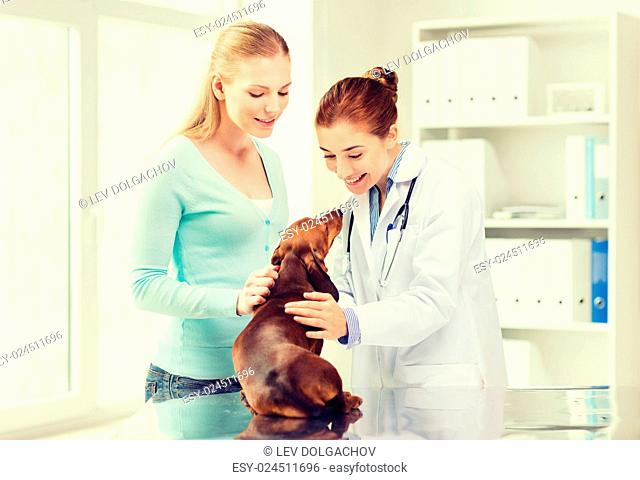 medicine, pet care and people concept - happy woman with dachshund dog and veterinarian doctor at vet clinic