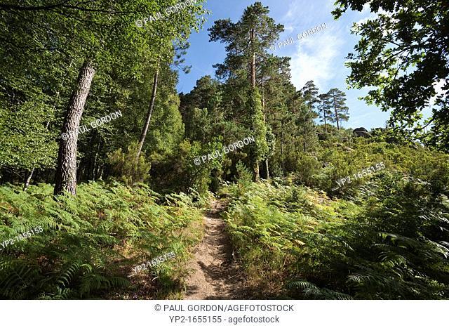 Pedra Bela Trail - Gerês, Peneda-Gerês National Park, Braga District, Norte Region, Portugal