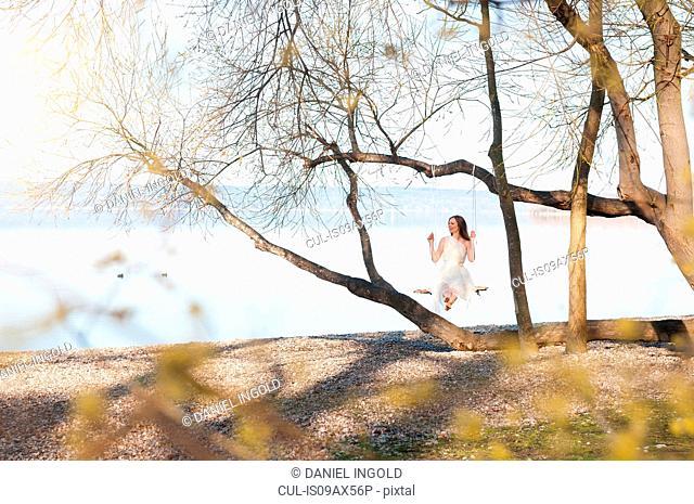 Woman sitting on tree swing by ocean looking away