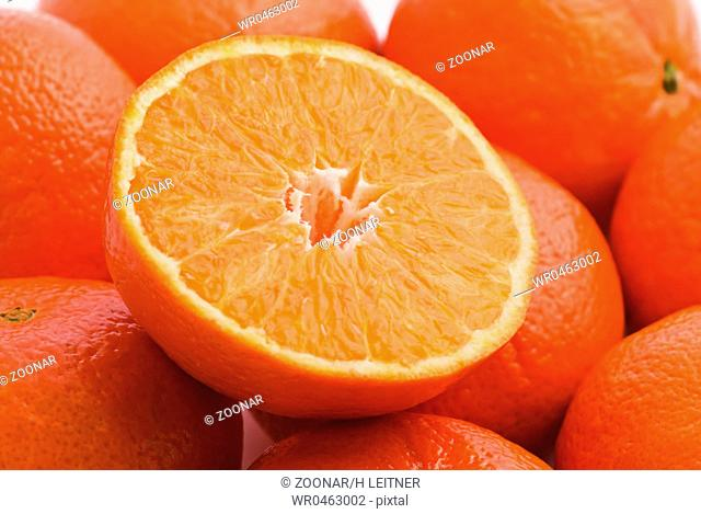 Orange Collection with one sliced orange as closeup