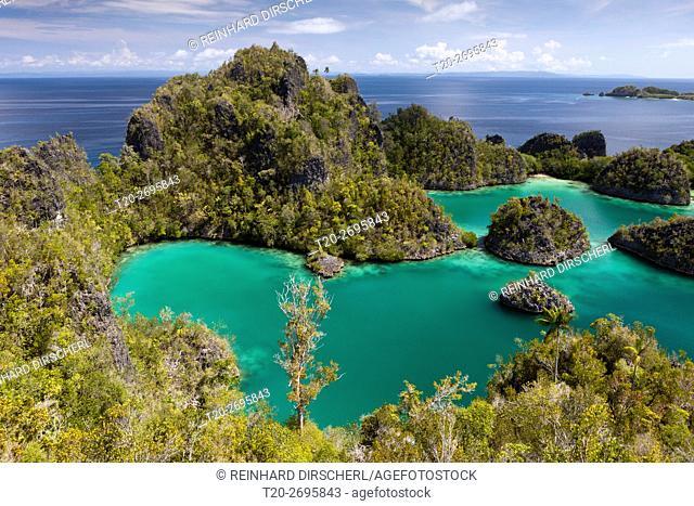 Scenic View of Penemu Island, Fam Islands, Raja Ampat, West Papua, Indonesia