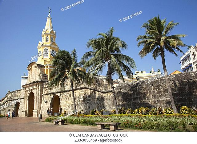 View to the Cathedral with clock tower in the historic center, Cartagena de Indias, Bolivar, Colombia, South America