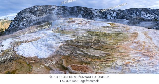 Mammoth Hot Springs, Yellowstone National Park, Unesco World Heritage Site, Wyoming, Usa, America