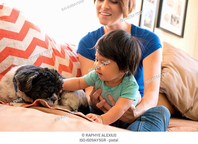 Mother watching baby playing with pet dog on sofa