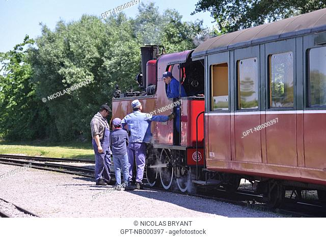 SIGHTSEEING STEAM TRAIN IN THE BAY OF SOMME, LE CROTOY STATION, SOMME, PICARDY, FRANCE